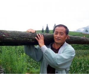 王清森:情系茶园报故土