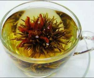 春天喝什么茶最健康